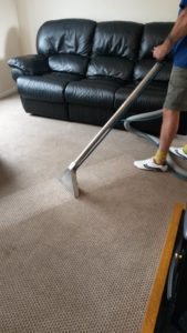 The cleaning of carpet fibres